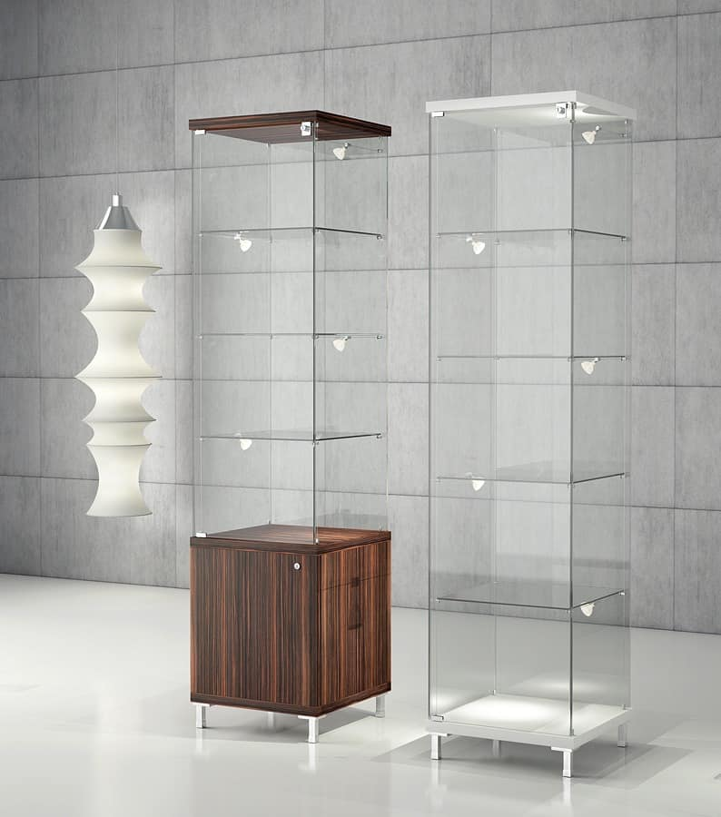 display cabinets showcase modern for jewelery idfdesign. Black Bedroom Furniture Sets. Home Design Ideas