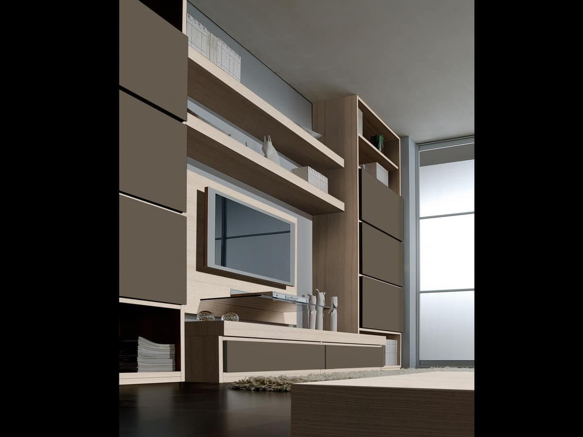Modular System For Living Room And Office With Library