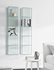 Rick 502, Wall cabinet in transparent glass