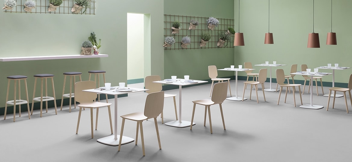 Babila wood, Collection of modern chairs