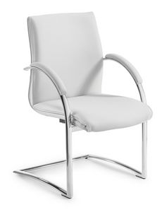 Araiss visitors, Chair for office customers