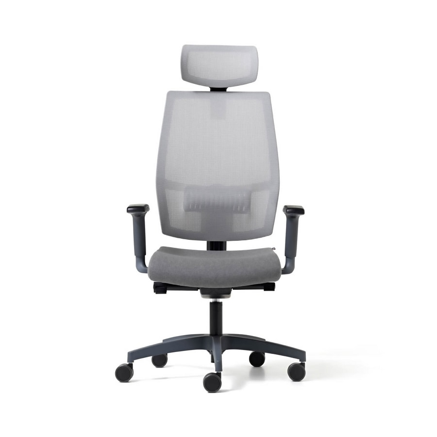 Lead mesh, Ergonomic office chair with mesh backrest