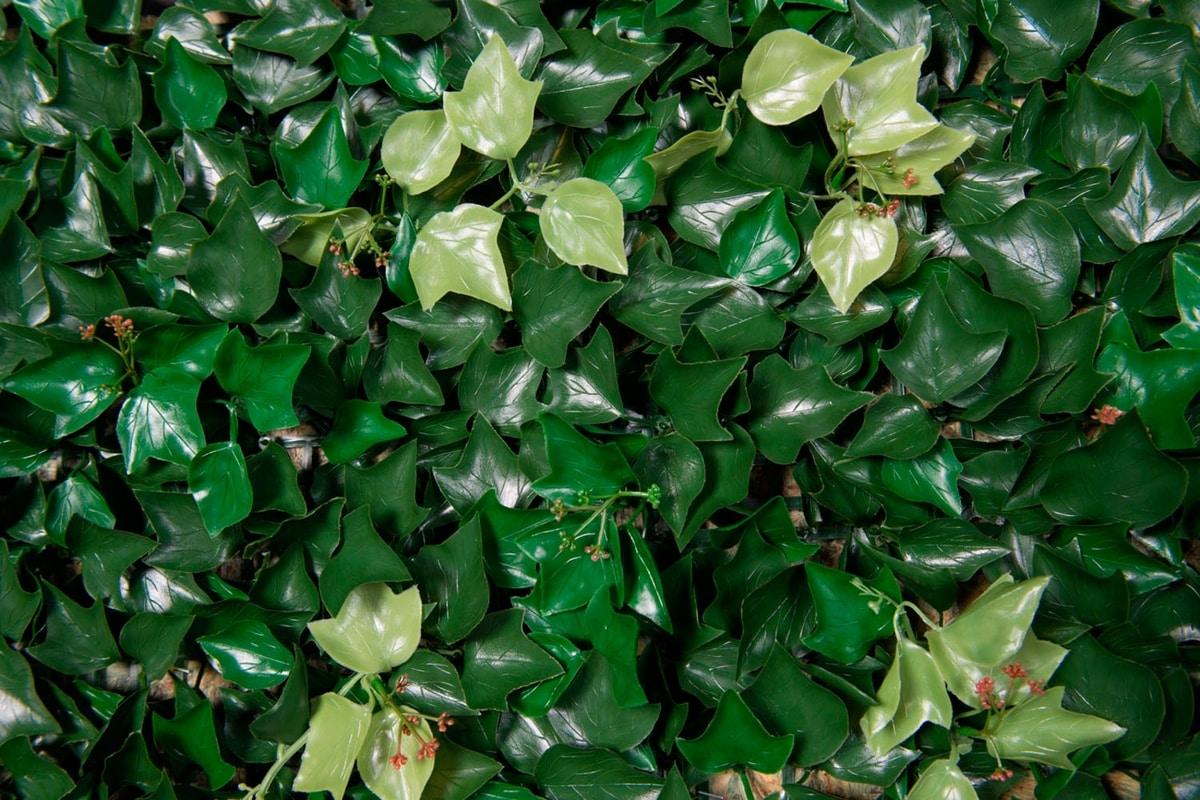 Edera, Synthetic ivy panel