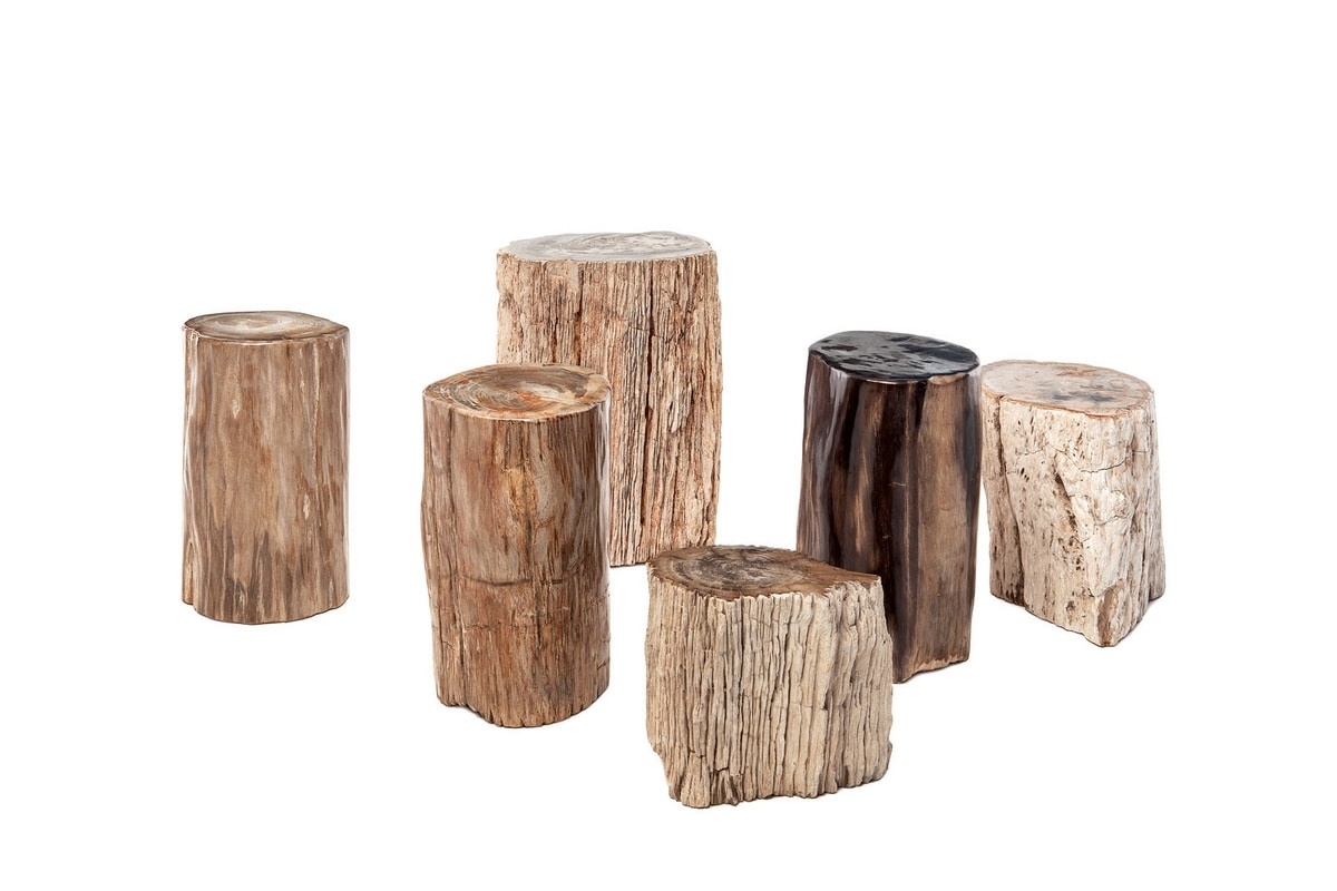 Fossil 0462, Small tables in petrified wood