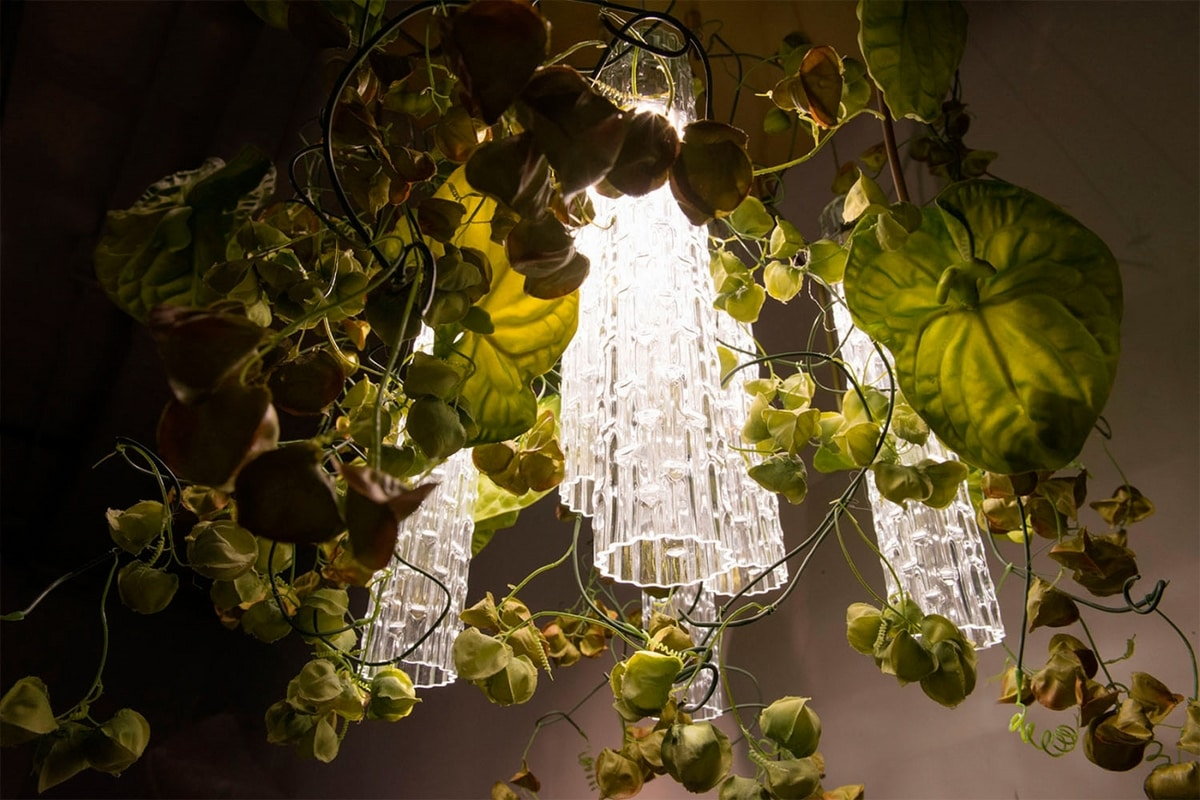 Flower Power Physalis Anthurium, LED chandelier