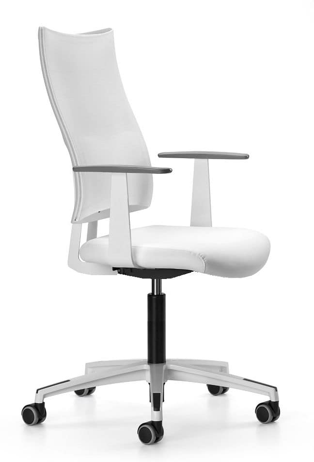 ALLYNET 1760, Task chair with 5-spoke in nylon, gas lift