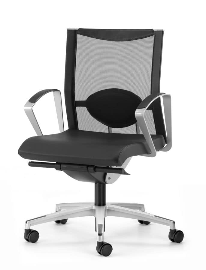 AVIANET 3604, Chair with 5-spoke, with lumbar support, for office