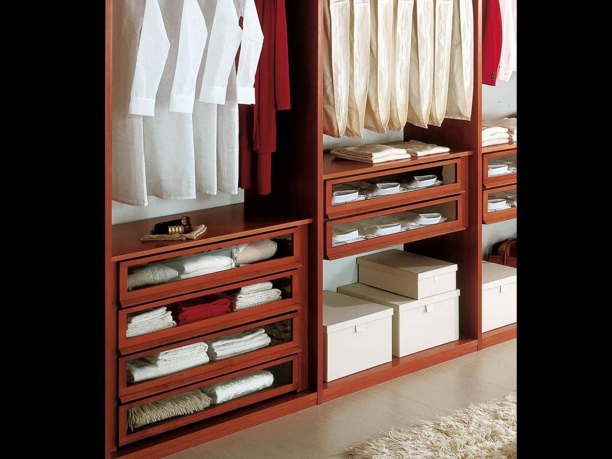Internal Equipment 12, Modern wardrobe with accessories, for bedrooms